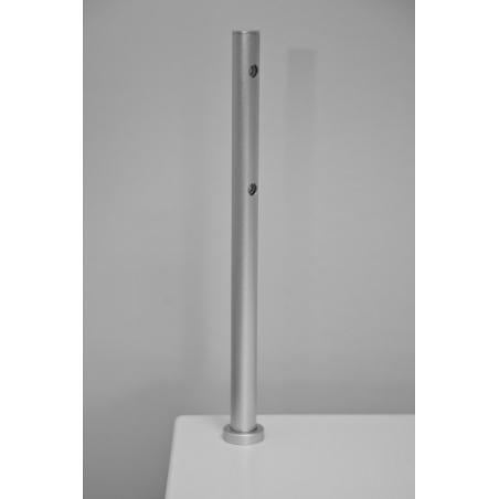 LED-Spot, Type 7, 216 mm, 2x1W, Silber (pro Stück)
